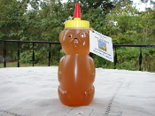 Honey - Organic Raw 12 oz Bear